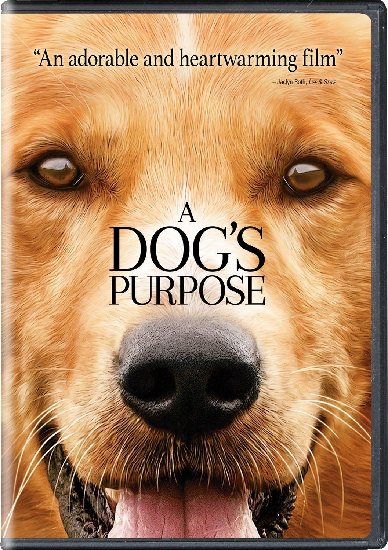 A Dog's Purpose DVD