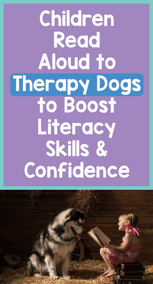 Children-Read-Aloud-to-Therapy-Dogs-to-Boost-Literacy-Skills-Confidence-feature-image